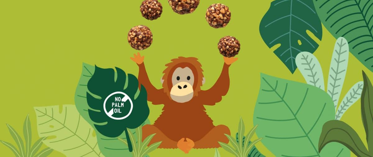 palm oil free healthy snacks